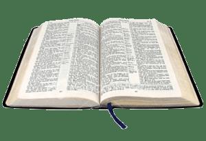 bijbel open bijbelstudie