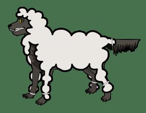 valse leer een wolf in schaapskleren